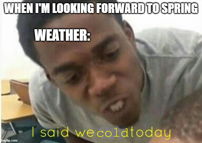 frightful |  WHEN I'M LOOKING FORWARD TO SPRING; WEATHER:; cold | image tagged in i said we ____ today | made w/ Imgflip meme maker