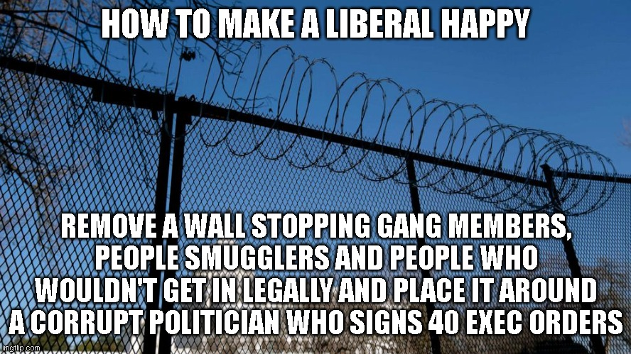 i guess walls do work after all...and liberals love it! |  HOW TO MAKE A LIBERAL HAPPY; REMOVE A WALL STOPPING GANG MEMBERS, PEOPLE SMUGGLERS AND PEOPLE WHO WOULDN'T GET IN LEGALLY AND PLACE IT AROUND A CORRUPT POLITICIAN WHO SIGNS 40 EXEC ORDERS | image tagged in barb wire-enclosed washington d c | made w/ Imgflip meme maker