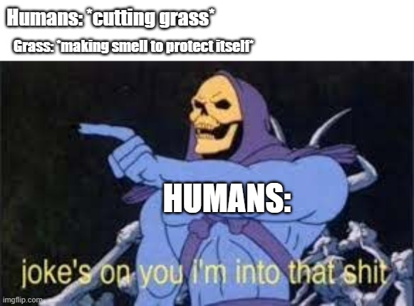 Damn- smells good |  Humans: *cutting grass*; Grass: *making smell to protect itself*; HUMANS: | image tagged in jokes on you im into that shit,grass | made w/ Imgflip meme maker