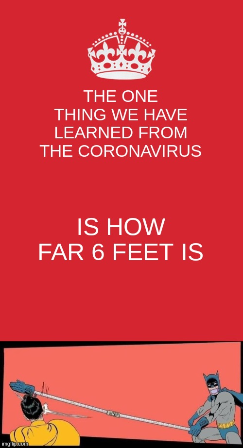 THE ONE THING WE HAVE LEARNED FROM THE CORONAVIRUS; IS HOW FAR 6 FEET IS | image tagged in memes,keep calm and carry on red,social distance batman slaps robin | made w/ Imgflip meme maker