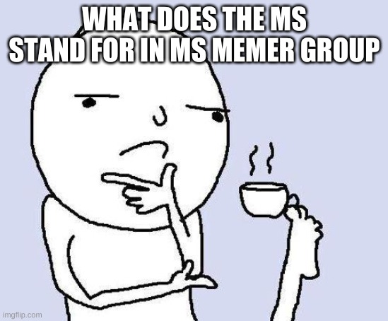 thinking meme |  WHAT DOES THE MS STAND FOR IN MS MEMER GROUP | image tagged in thinking meme | made w/ Imgflip meme maker