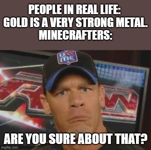 Are You Sure |  PEOPLE IN REAL LIFE:  GOLD IS A VERY STRONG METAL.  MINECRAFTERS:; ARE YOU SURE ABOUT THAT? | image tagged in are you sure about that | made w/ Imgflip meme maker