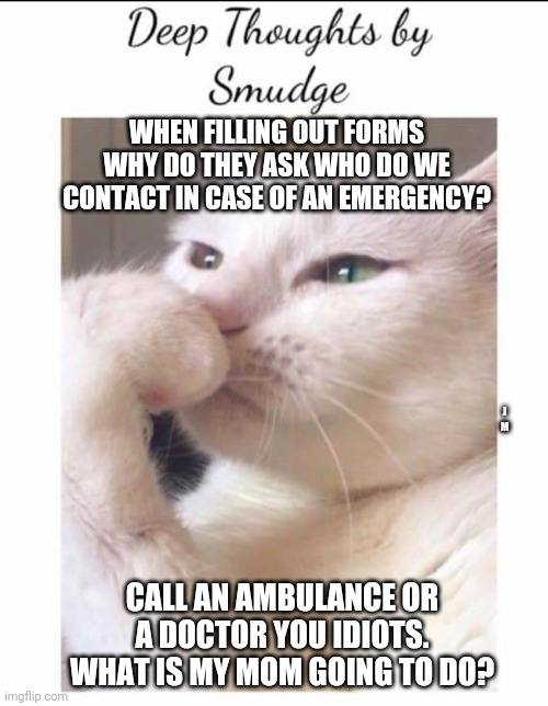 Smudge |  WHEN FILLING OUT FORMS WHY DO THEY ASK WHO DO WE CONTACT IN CASE OF AN EMERGENCY? J M; CALL AN AMBULANCE OR A DOCTOR YOU IDIOTS. WHAT IS MY MOM GOING TO DO? | image tagged in smudge | made w/ Imgflip meme maker
