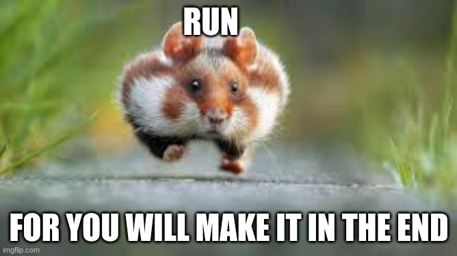 Run |  RUN; FOR YOU WILL MAKE IT IN THE END | image tagged in hamster,memes,you can do it | made w/ Imgflip meme maker