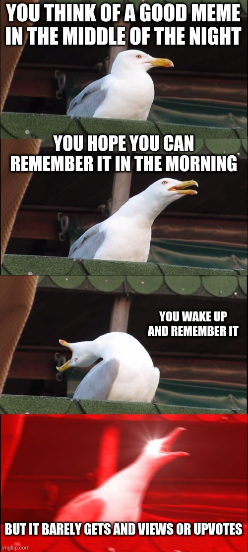 nani |  YOU THINK OF A GOOD MEME IN THE MIDDLE OF THE NIGHT; YOU HOPE YOU CAN REMEMBER IT IN THE MORNING; YOU WAKE UP AND REMEMBER IT; BUT IT BARELY GETS AND VIEWS OR UPVOTES | image tagged in memes,inhaling seagull,memory,views,upvotes | made w/ Imgflip meme maker