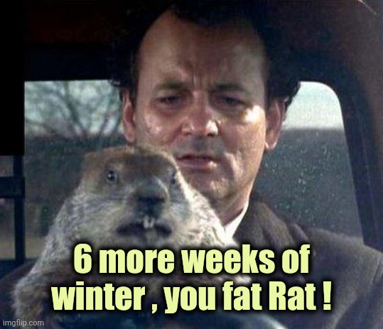 It's Groundhog Day ! |  6 more weeks of winter , you fat Rat ! | image tagged in groundhog day,forever,be afraid,winter is here,rat pack | made w/ Imgflip meme maker