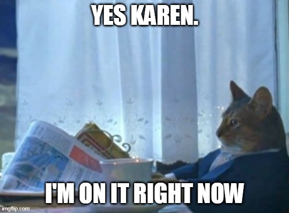 I Should Buy A Boat Cat |  YES KAREN. I'M ON IT RIGHT NOW | image tagged in memes,i should buy a boat cat | made w/ Imgflip meme maker