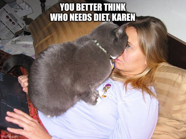You say I'm fat?! |  YOU BETTER THINK WHO NEEDS DIET, KAREN | image tagged in aggressive cat,fat,diet,karen,home,lockdown | made w/ Imgflip meme maker