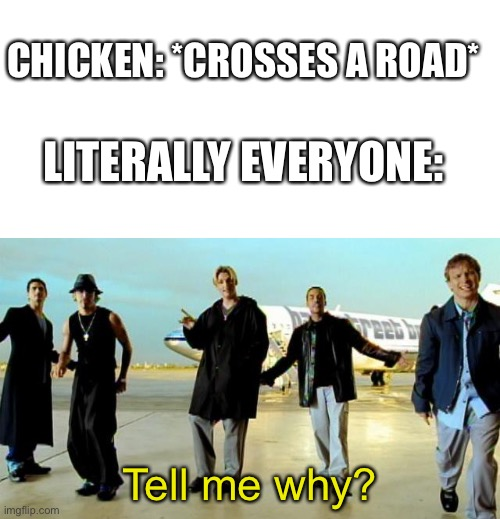 *Laughs in anticipated confusion* |  CHICKEN: *CROSSES A ROAD*; LITERALLY EVERYONE:; Tell me why? | image tagged in blank white template,i want it that way backstreet boys,chicken,road | made w/ Imgflip meme maker
