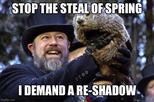 Stop the steal |  STOP THE STEAL OF SPRING; I DEMAND A RE-SHADOW | image tagged in groundhog day,vote,recount | made w/ Imgflip meme maker