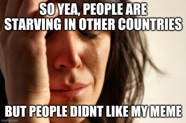 First World Problems Meme | SO YEA, PEOPLE ARE STARVING IN OTHER COUNTRIES BUT PEOPLE DIDNT LIKE MY MEME | image tagged in memes,first world problems | made w/ Imgflip meme maker