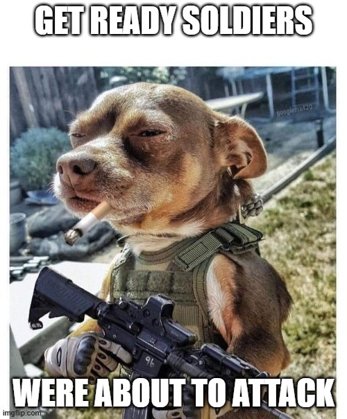 GET READY SOLDIERS; WERE ABOUT TO ATTACK | image tagged in how my dog sees himself when the doorbell rings | made w/ Imgflip meme maker