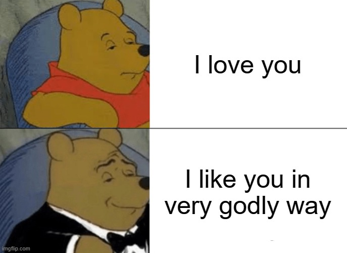 a random meme |  I love you; I like you in very godly way | image tagged in memes,tuxedo winnie the pooh | made w/ Imgflip meme maker