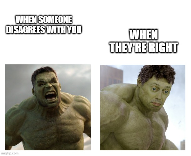 Hulk Realizes He's Wrong |  WHEN THEY'RE RIGHT; WHEN SOMEONE DISAGREES WITH YOU | image tagged in hulk angry then realizes he's wrong | made w/ Imgflip meme maker