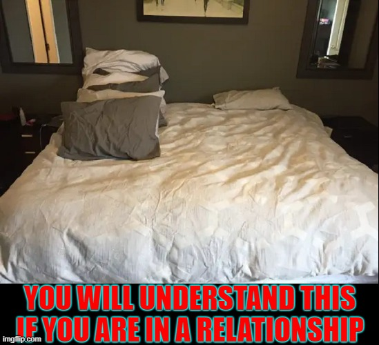 Sleeping with the Enemy |  YOU WILL UNDERSTAND THIS IF YOU ARE IN A RELATIONSHIP | image tagged in vince vance,relationships,memes,pillow,hog,beds | made w/ Imgflip meme maker