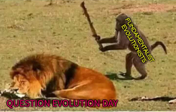 Bad Decisions |  FUNDAMENTALIST EVOLUTIONISTS; QUESTION EVOLUTION DAY | image tagged in bad decisions,darwin,question evolution day,free speech | made w/ Imgflip meme maker