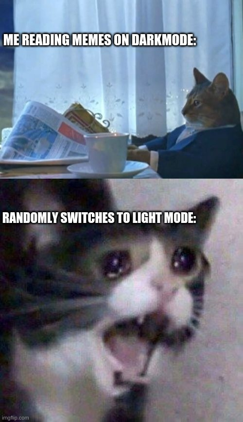 I hate it when this happens |  ME READING MEMES ON DARKMODE:; RANDOMLY SWITCHES TO LIGHT MODE: | image tagged in memes,screaming cat,dark mode | made w/ Imgflip meme maker