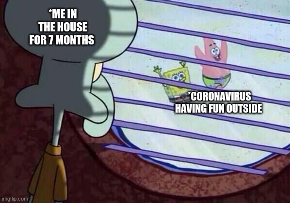 Squidward window |  *ME IN THE HOUSE FOR 7 MONTHS; *CORONAVIRUS HAVING FUN OUTSIDE | image tagged in squidward window | made w/ Imgflip meme maker