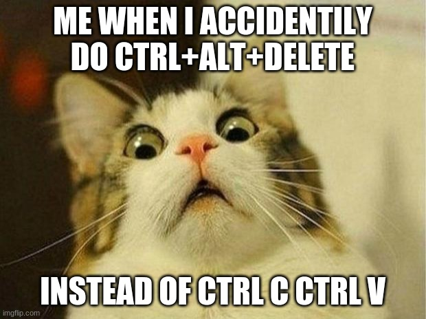 Scared Cat |  ME WHEN I ACCIDENTILY DO CTRL+ALT+DELETE; INSTEAD OF CTRL C CTRL V | image tagged in memes,scared cat | made w/ Imgflip meme maker