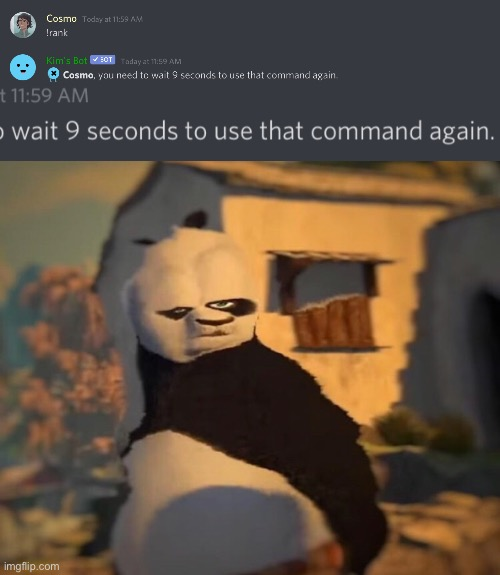 B r u h | image tagged in drunk kung fu panda,preston,discord | made w/ Imgflip meme maker