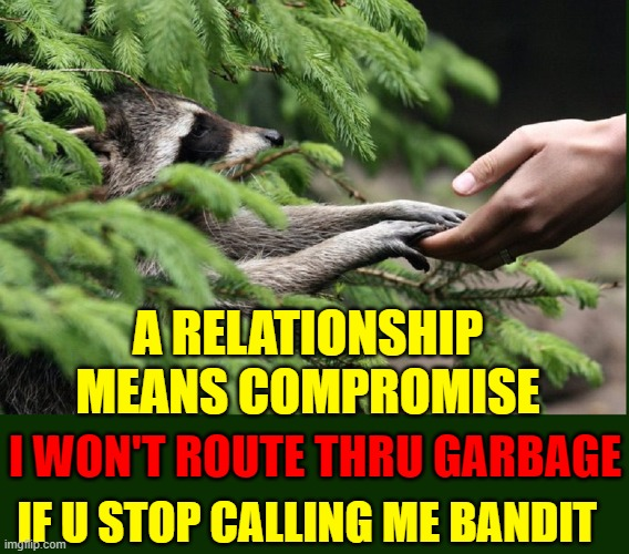 Hurdles in Intra-Species Dating: Bargaining |  A RELATIONSHIP MEANS COMPROMISE; I WON'T ROUTE THRU GARBAGE; IF U STOP CALLING ME BANDIT | image tagged in vince vance,raccoon,dating,relationships,comromise,memes | made w/ Imgflip meme maker