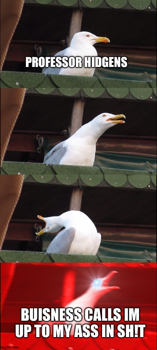 Inhaling Seagull Meme |  PROFESSOR HIDGENS; BUISNESS CALLS IM UP TO MY ASS IN SH!T | image tagged in memes,inhaling seagull | made w/ Imgflip meme maker