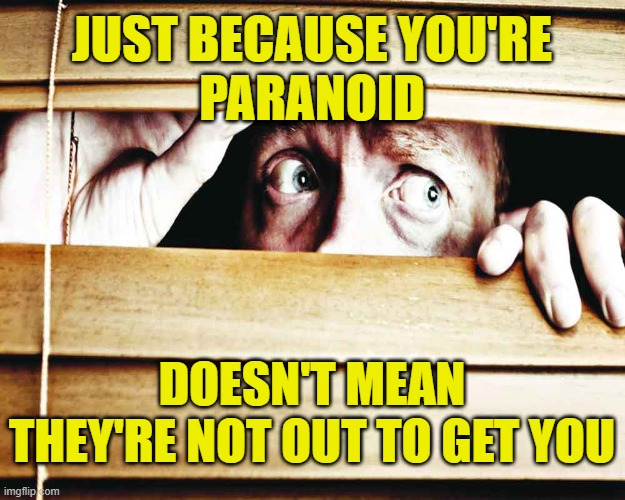 Paranoid |  JUST BECAUSE YOU'RE PARANOID; DOESN'T MEAN THEY'RE NOT OUT TO GET YOU | image tagged in fear | made w/ Imgflip meme maker