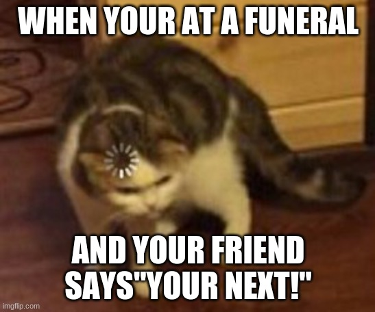 "Loading cat |  WHEN YOUR AT A FUNERAL; AND YOUR FRIEND SAYS""YOUR NEXT!"" 