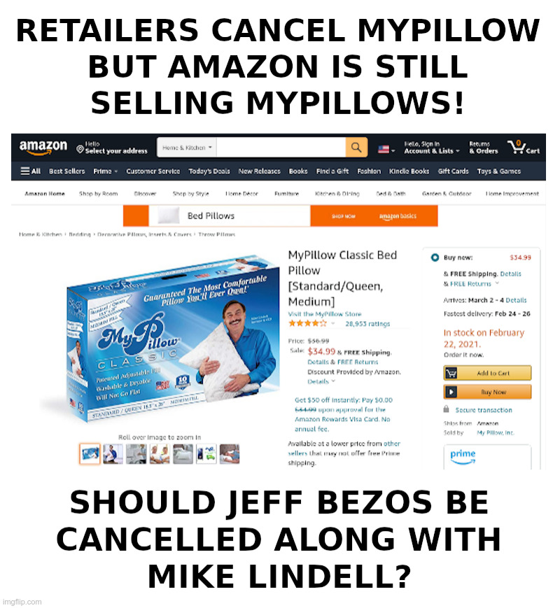 Should Jeff Bezos Be Cancelled Like Mike Lindell? | image tagged in jeff bezos,arrogant rich man,amazon,mike lindell,pillow,fight | made w/ Imgflip meme maker