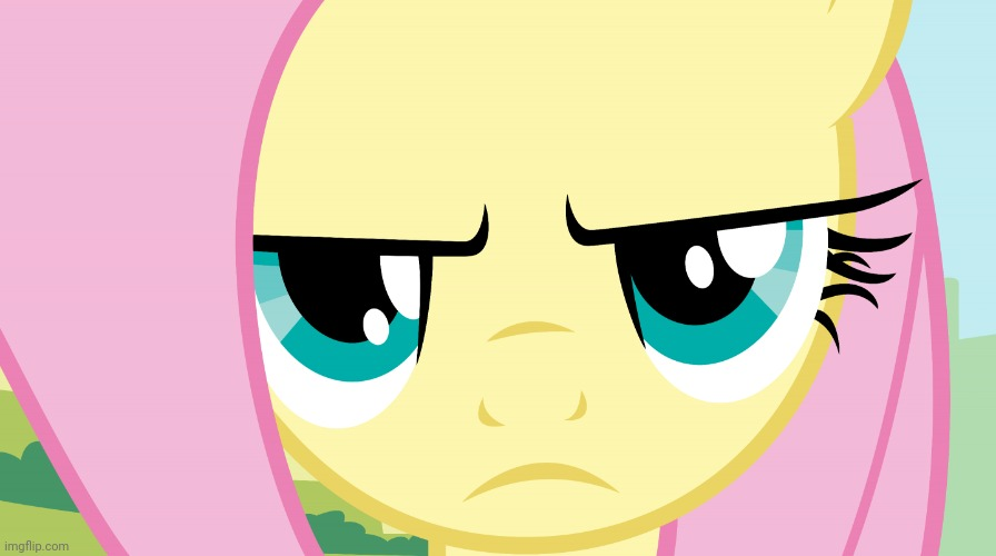 Fluttershy Not Amused (MLP) | image tagged in fluttershy not amused mlp | made w/ Imgflip meme maker
