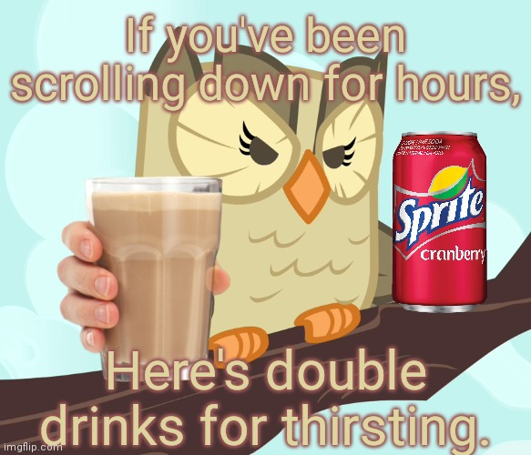 Scowled Owlowiscious (MLP) |  If you've been scrolling down for hours, Here's double drinks for thirsting. | image tagged in scowled owlowiscious mlp,choccy milk,sprite cranberry,memes,keep scrolling,stop reading the tags | made w/ Imgflip meme maker