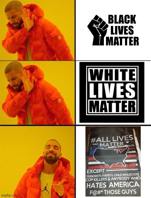 Siriusly, All Lives Matter | image tagged in drake meme 3 panels,funny,black lives matter,hilarious,awesome,racism | made w/ Imgflip meme maker