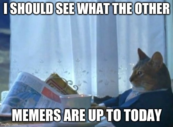 What's up, memers? |  I SHOULD SEE WHAT THE OTHER; MEMERS ARE UP TO TODAY | image tagged in memes,i should buy a boat cat | made w/ Imgflip meme maker
