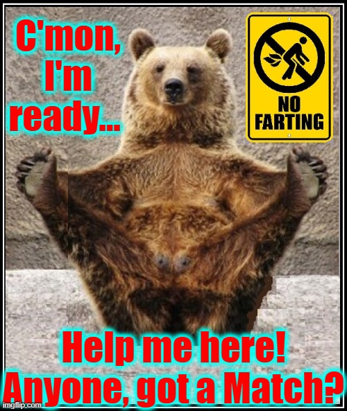 Helping our Furry Friends |  C'mon,   I'm   ready... Help me here! Anyone, got a Match? | image tagged in vince vance,bears,funny animal meme,lighting,farts,yoga | made w/ Imgflip meme maker