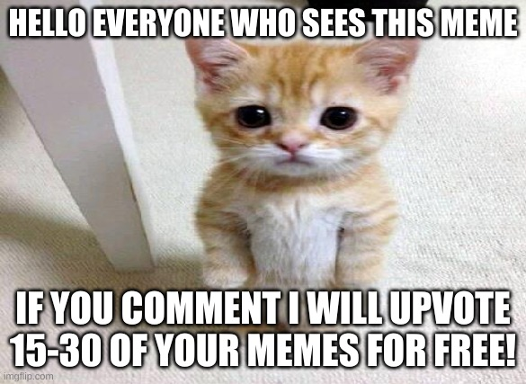 Heyo |  HELLO EVERYONE WHO SEES THIS MEME; IF YOU COMMENT I WILL UPVOTE 15-30 OF YOUR MEMES FOR FREE! | image tagged in meme,free,upvotes,for,you,comment | made w/ Imgflip meme maker