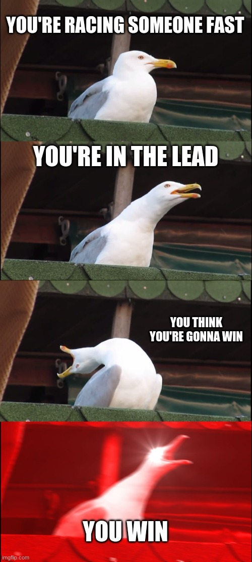 You won |  YOU'RE RACING SOMEONE FAST; YOU'RE IN THE LEAD; YOU THINK YOU'RE GONNA WIN; YOU WIN | image tagged in memes,inhaling seagull,yeet,swimming | made w/ Imgflip meme maker