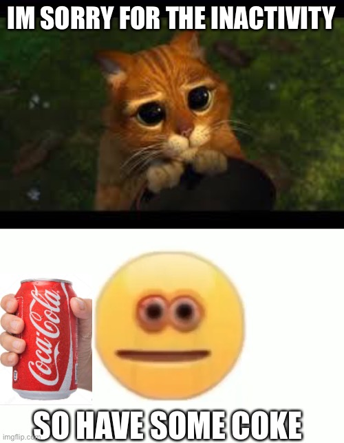 S |  IM SORRY FOR THE INACTIVITY; SO HAVE SOME COKE | image tagged in apology cat,coke,vibe check | made w/ Imgflip meme maker