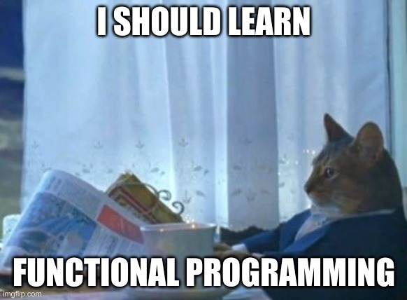 I should learn functional programming meme