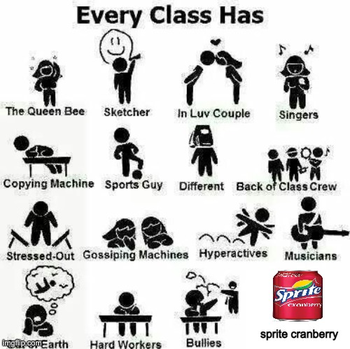 In every class there's the |  sprite cranberry | image tagged in in every class there s the,memes,sketcher,musician,singer,different | made w/ Imgflip meme maker