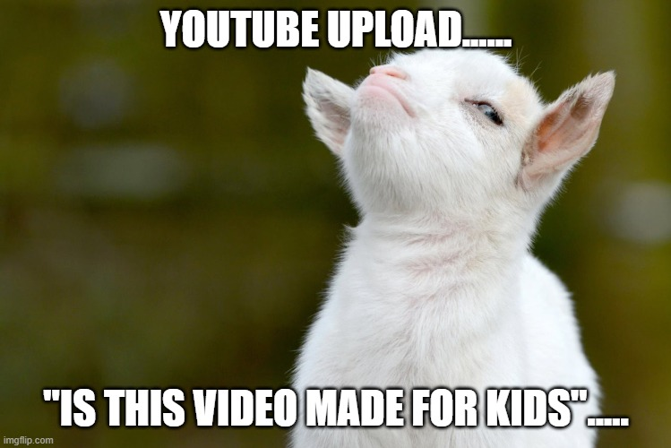 "The only legitimate way to ever ask me... |  YOUTUBE UPLOAD...... ""IS THIS VIDEO MADE FOR KIDS""..... 