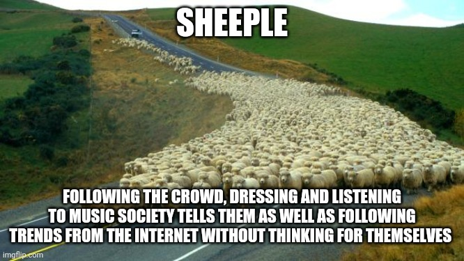 Sheeple be like |  SHEEPLE; FOLLOWING THE CROWD, DRESSING AND LISTENING TO MUSIC SOCIETY TELLS THEM AS WELL AS FOLLOWING TRENDS FROM THE INTERNET WITHOUT THINKING FOR THEMSELVES | image tagged in sheep,memes,sheeple | made w/ Imgflip meme maker