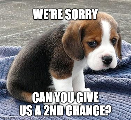We're sorry |  WE'RE SORRY; CAN YOU GIVE US A 2ND CHANCE? | image tagged in sad puppy,sorry,2nd chance,dog,we're sorry,do over | made w/ Imgflip meme maker