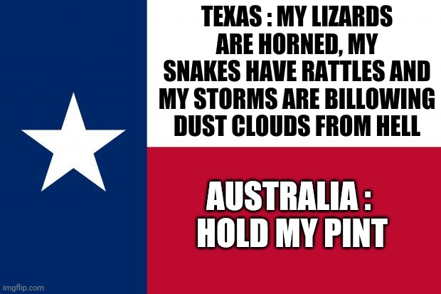Don't Mess With The Lonestar State |  TEXAS : MY LIZARDS ARE HORNED, MY SNAKES HAVE RATTLES AND MY STORMS ARE BILLOWING DUST CLOUDS FROM HELL; AUSTRALIA :  HOLD MY PINT | image tagged in because texas,memes,texas,meanwhile in australia,australia,hold my beer | made w/ Imgflip meme maker
