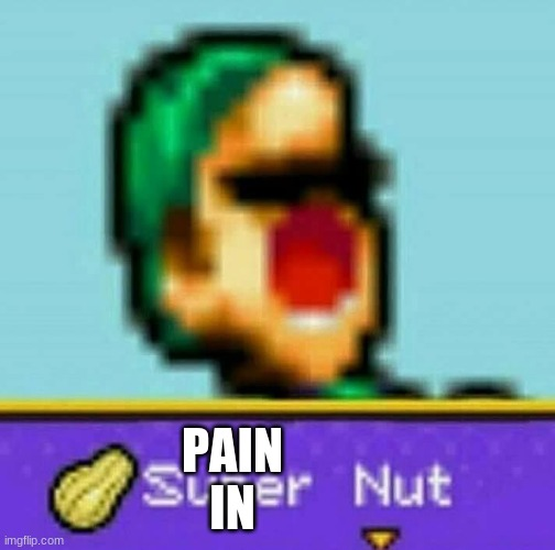 Luigi Super Nut | PAIN IN | image tagged in luigi super nut | made w/ Imgflip meme maker