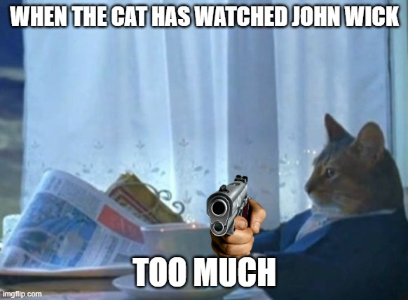 I Should Buy A Boat Cat |  WHEN THE CAT HAS WATCHED JOHN WICK; TOO MUCH | image tagged in memes,john wick | made w/ Imgflip meme maker
