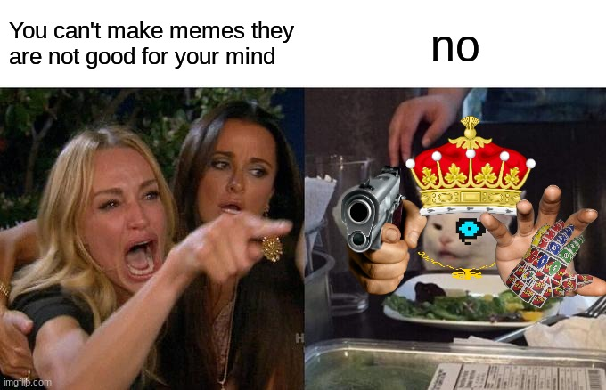 do you like memes? |  You can't make memes they are not good for your mind; no | image tagged in memes,woman yelling at cat | made w/ Imgflip meme maker