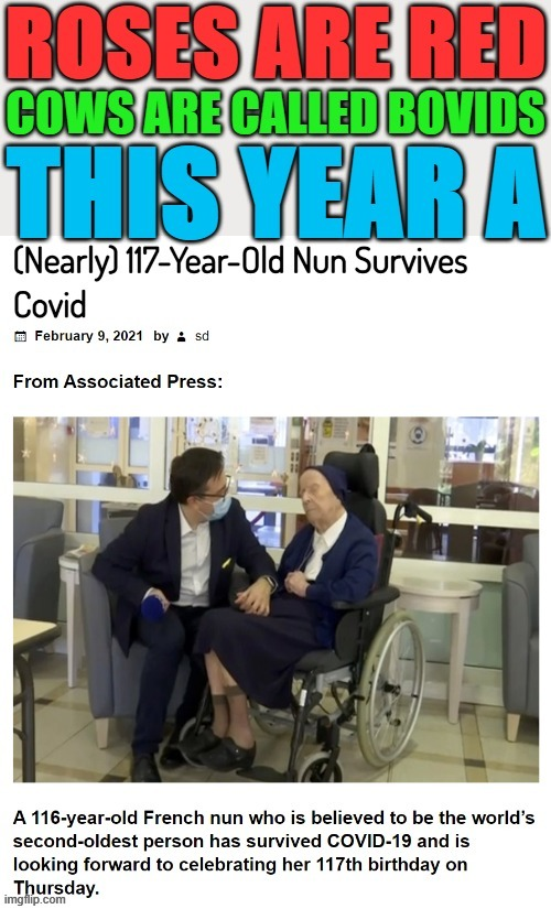 eyyy rhyme time | image tagged in covid-19,coronavirus,nun,survivor | made w/ Imgflip meme maker