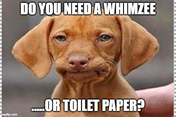 Stinky Dog |  DO YOU NEED A WHIMZEE; .....OR TOILET PAPER? | image tagged in dog meme | made w/ Imgflip meme maker