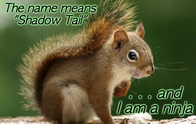 "True etymology: skia + ouros = shadow tail |  The name means ""Shadow Tail""; . . . and I am a ninja 