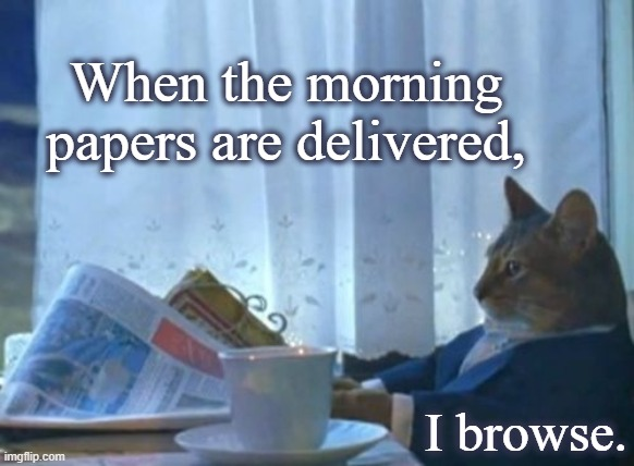 Browsing the papers |  When the morning papers are delivered, I browse. | image tagged in memes,cat,news,newspaper,media,pets | made w/ Imgflip meme maker